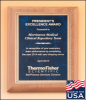 Click this Image to visit the Corporate Plaques Made in the USA category.