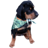 Full Color Custom Pet Bandana Pet Items