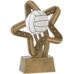 Volleyball - Stars and Stripes A Best Seller! Star Resin Award