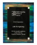 Painted Floating Acrylic Plaque Acrylics with Color