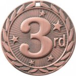 3rd Place - FE Iron Medal All Award Medals