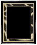 Artist Series Plate (Black) with Piano Finish Plaque Artist Series Plate