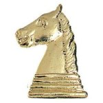 Chess - Chenille Pin Chenille Pins