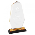 Impress Octagon Point Acrylic Award - Gold Gold Colored Acrylic Awards