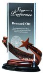 Bronze Brilliance Star Award - Clear Rectangle Patriotic and Military