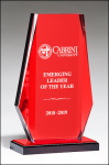 Red Mirror Acrylic Award Red Colored Acrylic Awards