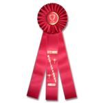 Outstanding Achievement - Classic Three Streamer Rosette Award Ribbon Rosette Ribbons - Three Streamer