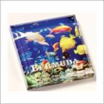 Full Color Acrylic Paperweight Square Rectangle Awards