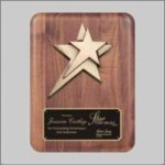 Solid American Walnut Plaque with Star Casting Star Awards