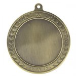 Illusion Insert Medal Holder - Custom Disc Star Employees