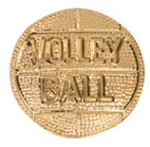 Volleyball - Chenille Pin Volleyball and Throwball Medals